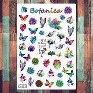 Botanica (S-121), фото 1