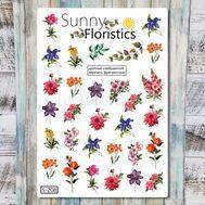 Sunny Floristics (S-208), фото 1